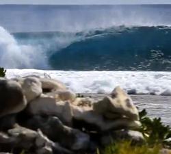 TUAMOTU surf
