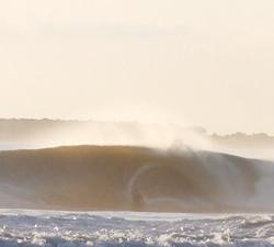 bud bud surf