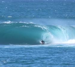 bodyboarding shark island